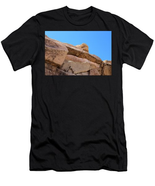 Stone  Arch In Joshua Tree Men's T-Shirt (Athletic Fit)