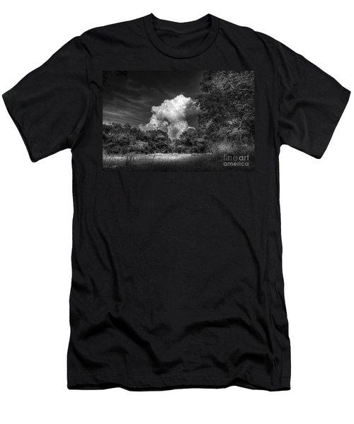 Storm Beyond The Meadow Men's T-Shirt (Athletic Fit)