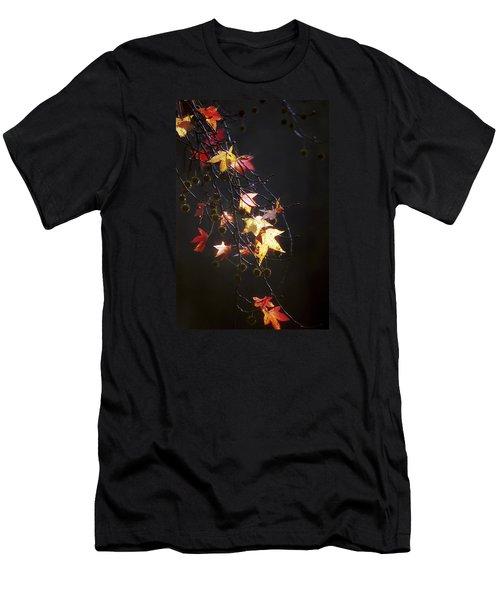 Storm's Bliss Men's T-Shirt (Athletic Fit)
