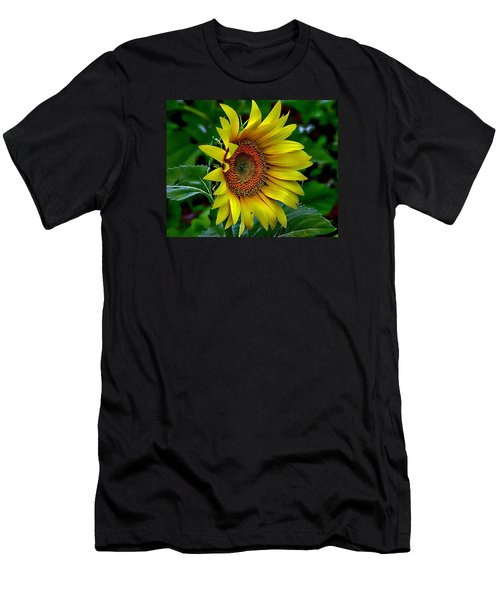 Straight Up Sunflower Men's T-Shirt (Athletic Fit)
