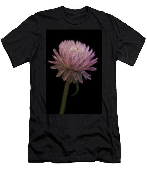 Straw Flower Men's T-Shirt (Slim Fit) by Sandra Foster