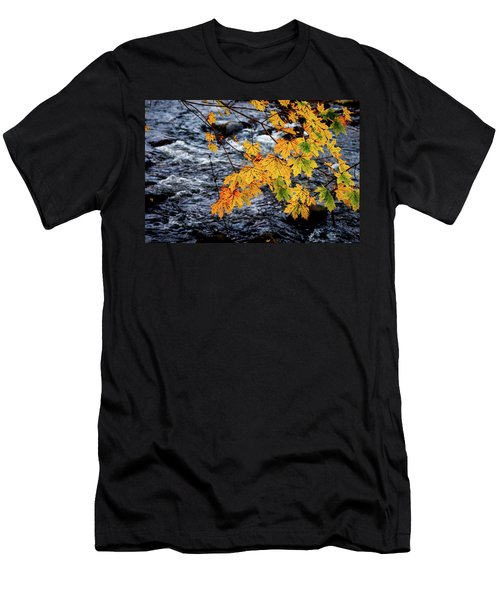 Stream In Fall Men's T-Shirt (Athletic Fit)