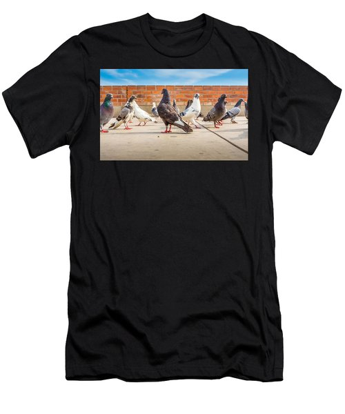 Street Pigeons. Men's T-Shirt (Athletic Fit)