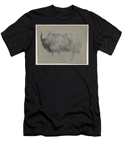 Study Of A Ewe Men's T-Shirt (Athletic Fit)