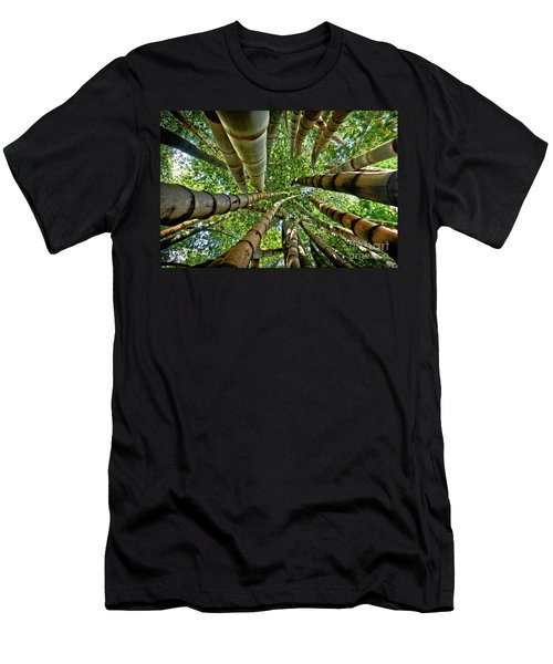 Stunning Bamboo Forest - Color Men's T-Shirt (Athletic Fit)