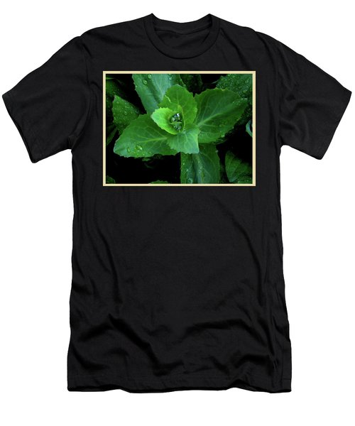 Succulent After The Rain  Men's T-Shirt (Athletic Fit)