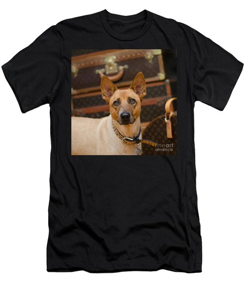 Men's T-Shirt (Athletic Fit) featuring the photograph Sugar by Irina ArchAngelSkaya