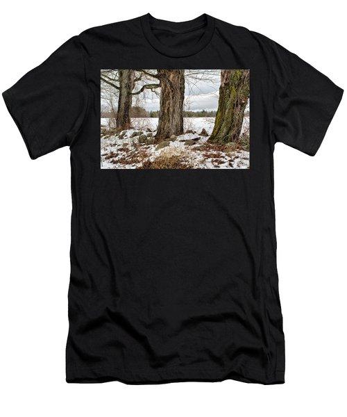 Sugar Maples  Men's T-Shirt (Athletic Fit)