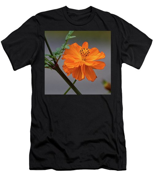 Sulfur Cosmos Men's T-Shirt (Athletic Fit)