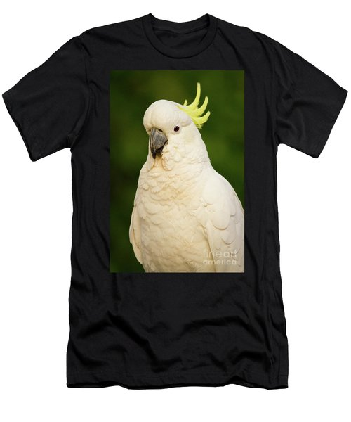 Sulphur Crested Cockatoo Men's T-Shirt (Athletic Fit)