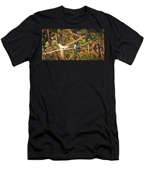 Sulphur Crested Cockatoos - Australia Men's T-Shirt (Athletic Fit)