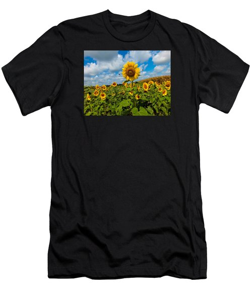 Summer At The Farm Men's T-Shirt (Athletic Fit)