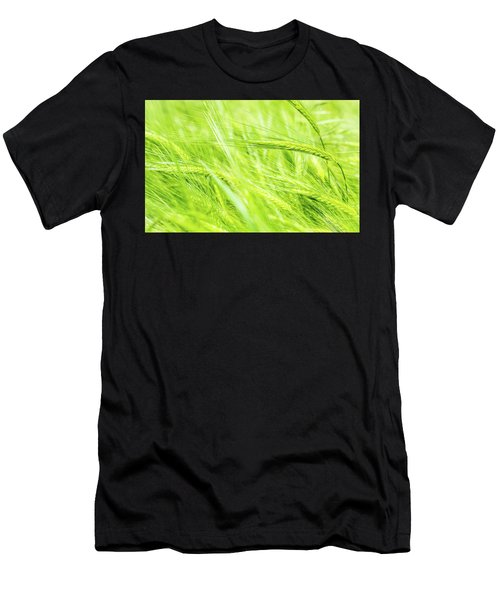 Summer Barley. Men's T-Shirt (Athletic Fit)