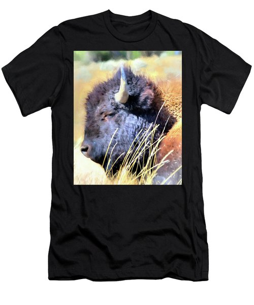 Summer Dozing - Buffalo Men's T-Shirt (Athletic Fit)