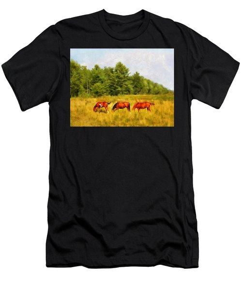 Summer Hay Burners Men's T-Shirt (Athletic Fit)