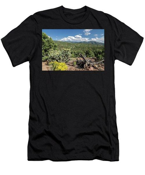 Summer In Santa Fe Men's T-Shirt (Athletic Fit)