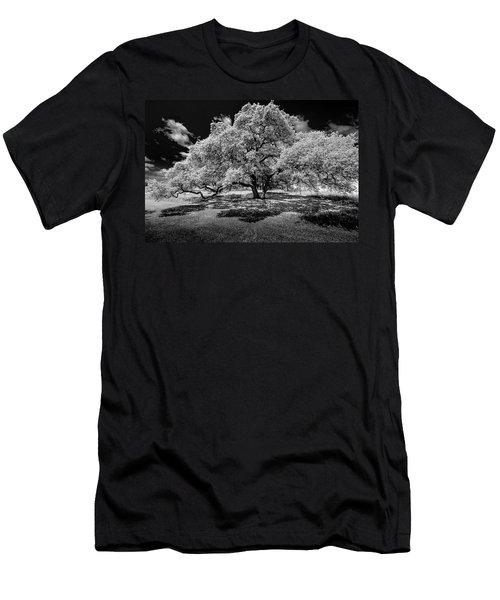 A Summer's Night Men's T-Shirt (Slim Fit) by Darryl Dalton