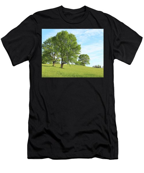 Summer Trees Men's T-Shirt (Athletic Fit)