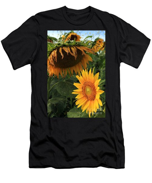Men's T-Shirt (Slim Fit) featuring the photograph Sun Flowers  Past  And  Present  by Paula Guttilla