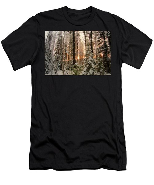 Sun Of Winter Trees Men's T-Shirt (Athletic Fit)
