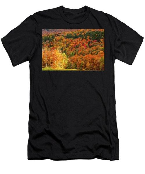 Sun Peeking Through Men's T-Shirt (Athletic Fit)