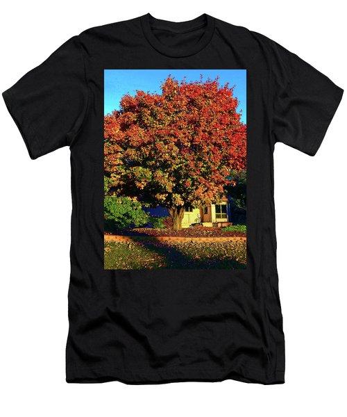 Sun-shining Autumn Men's T-Shirt (Athletic Fit)