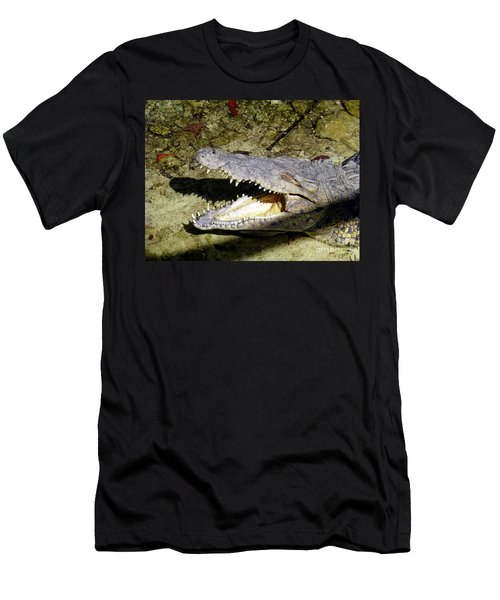 Men's T-Shirt (Athletic Fit) featuring the photograph Sunbathing Croc by Francesca Mackenney