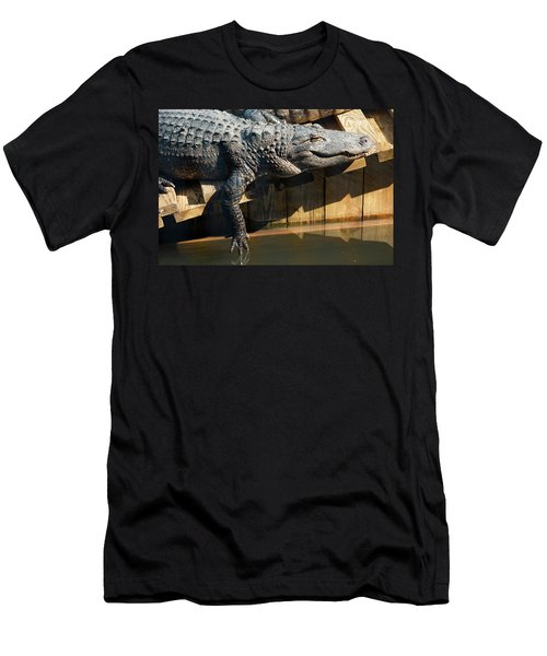 Sunbathing Gator Men's T-Shirt (Athletic Fit)