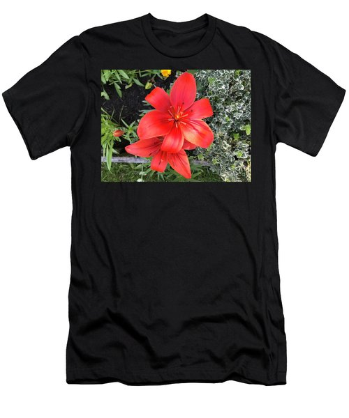 Sunbeam On Red Day Lily Men's T-Shirt (Athletic Fit)