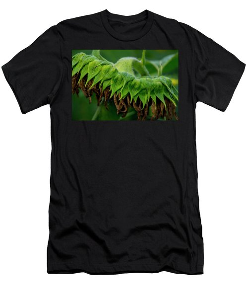 Men's T-Shirt (Athletic Fit) featuring the photograph Sunflower 2017 1 by Buddy Scott