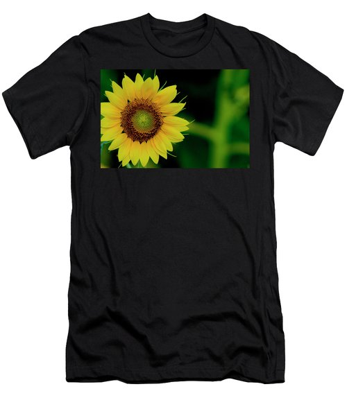Men's T-Shirt (Athletic Fit) featuring the photograph Sunflower 2017 10 by Buddy Scott
