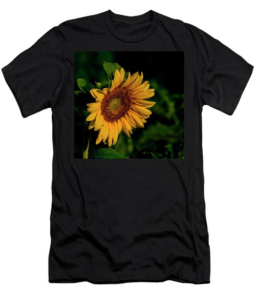 Men's T-Shirt (Athletic Fit) featuring the photograph Sunflower 2017 11 by Buddy Scott