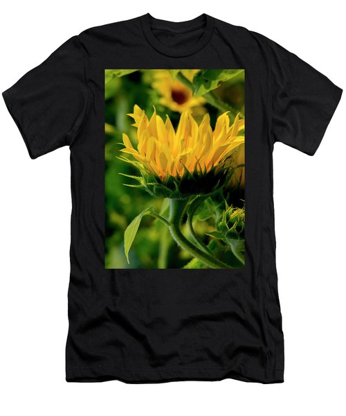 Men's T-Shirt (Athletic Fit) featuring the photograph Sunflower 2017 13 by Buddy Scott
