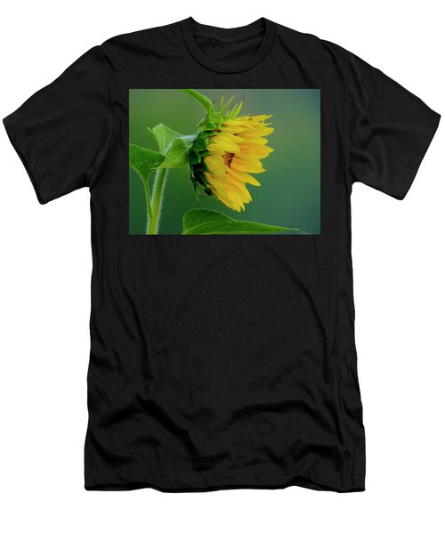 Men's T-Shirt (Athletic Fit) featuring the photograph Sunflower 2017 2 by Buddy Scott