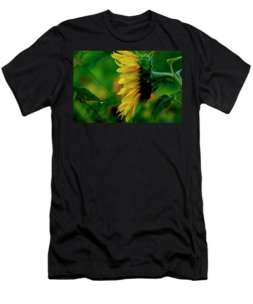 Men's T-Shirt (Athletic Fit) featuring the photograph Sunflower 2017 3 by Buddy Scott