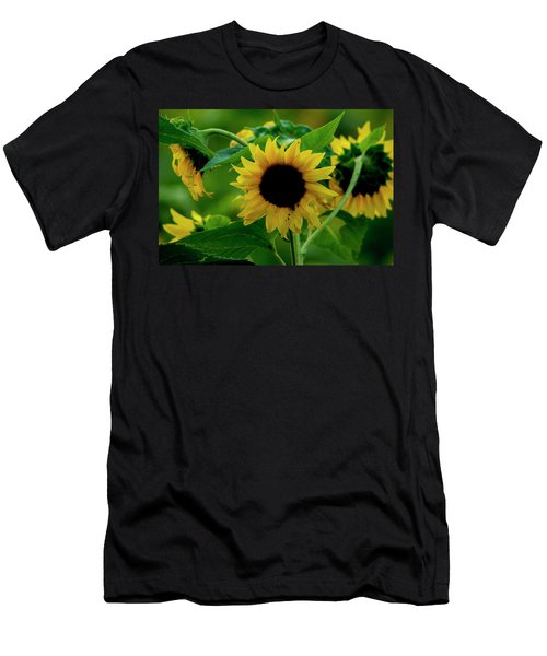 Men's T-Shirt (Athletic Fit) featuring the photograph Sunflower 2017 5 by Buddy Scott