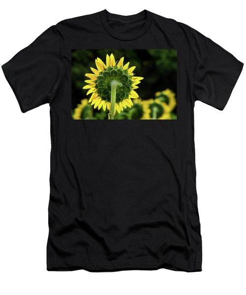 Sunflower Back Men's T-Shirt (Athletic Fit)