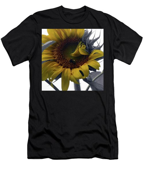 Sunflower Bee Men's T-Shirt (Athletic Fit)