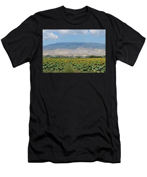 Sunflower Farming Splendor In Delta Co Men's T-Shirt (Athletic Fit)