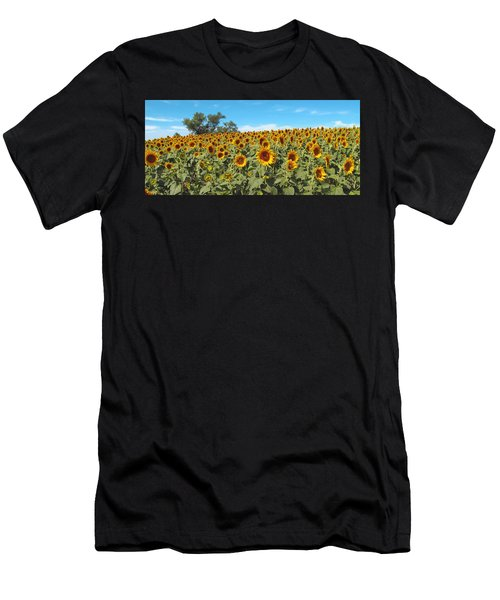 Sunflower Field One Men's T-Shirt (Athletic Fit)