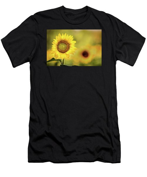 Sunflower In A Field Men's T-Shirt (Athletic Fit)