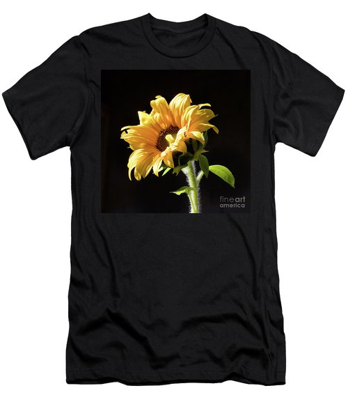 Sunflower Isloated On Black Men's T-Shirt (Athletic Fit)