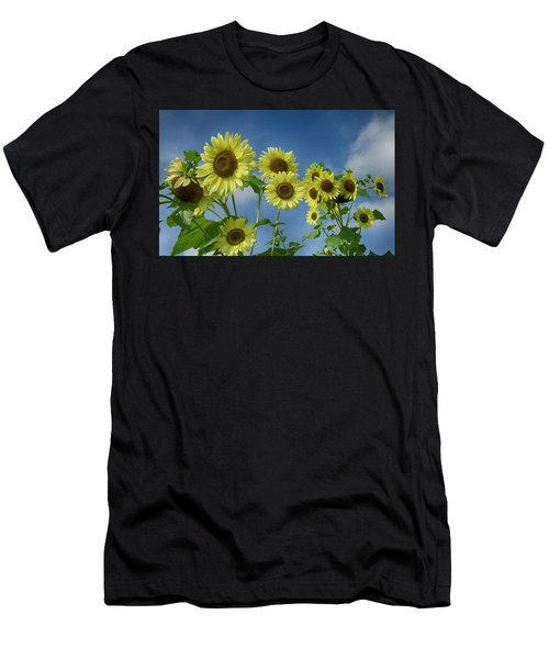 Sunflower Party Men's T-Shirt (Athletic Fit)