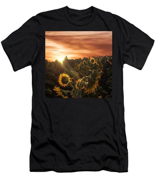 Sunflower Rise Men's T-Shirt (Athletic Fit)