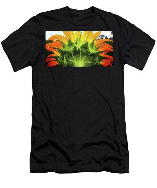 Sunflower Sunburst Men's T-Shirt (Athletic Fit)
