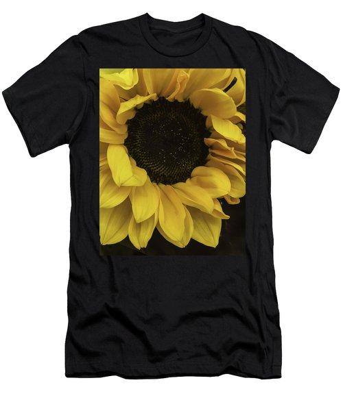 Sunflower Up Close Men's T-Shirt (Athletic Fit)
