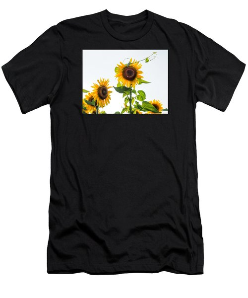 Sunflower With Vine Men's T-Shirt (Athletic Fit)