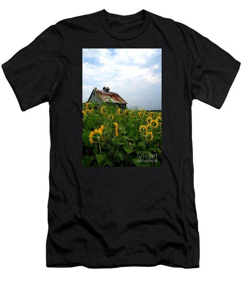 Sunflowers Along Rt 6 Men's T-Shirt (Athletic Fit)