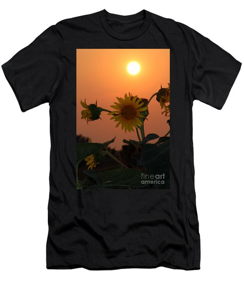 Sunflowers At Sunset Men's T-Shirt (Slim Fit)