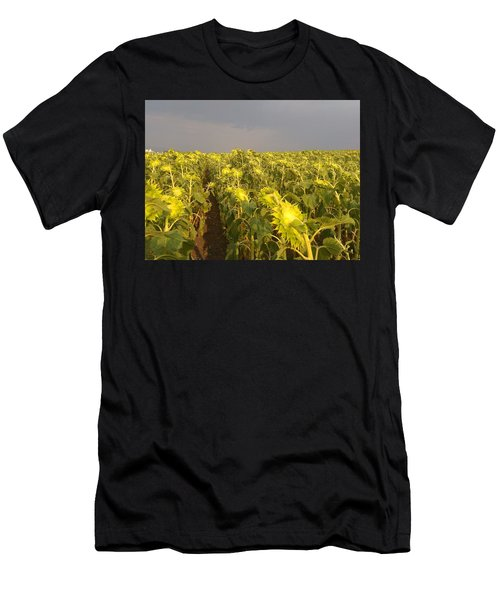 Sunflowers Before The Storm Men's T-Shirt (Athletic Fit)